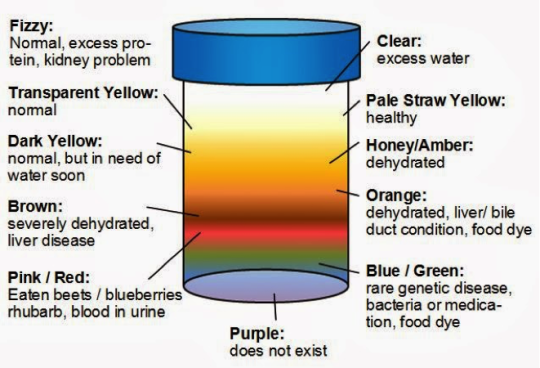 how to tell if your urine is clean